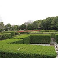 長久保公園都市緑化植物園