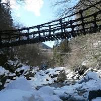 奥祖谷二重かずら橋(おくいやにじゅうかずらばし)