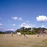 のかみふれあい公園 の写真 (1)
