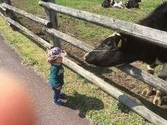 ゴールデンウイークにおすすめ!福岡県の子ども向け体験イベント5選