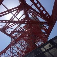 東京タワー の写真 (2)