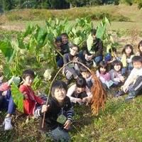 あそあそ自然学校 の写真 (2)