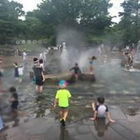 haruさんが撮った 郷土の森公園 の写真