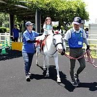 福島競馬場 の写真 (3)