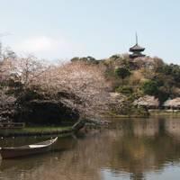 三溪園 (さんけいえん) の写真 (3)