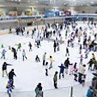 邦和スポーツランド スケートリンク