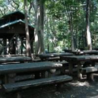 藤沢市少年の森