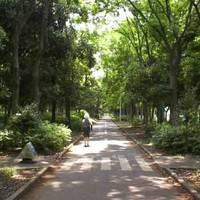 行田公園 (ぎょうだこうえん)