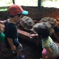 まぁぁちゃんさんが撮った 体感型動物園iZoo(イズー) の写真