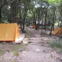 金立教育キャンプ場