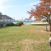 妙典公園 の写真 (2)
