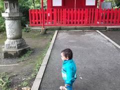 ボートに乗れる関東の公園17選。夫婦のデートに最適な東京や神奈川のスワンボートもご紹介。