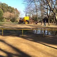 市制記念公園 の写真 (2)