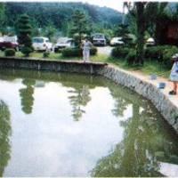 山本きのこ山荘 の写真 (3)