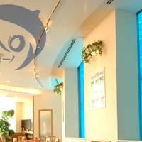 【閉店】Restaurant&Cafe Delfino の写真 (2)