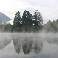 金鱗湖(きんりんこ) の写真 (2)