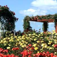 蜂ヶ峯総合公園