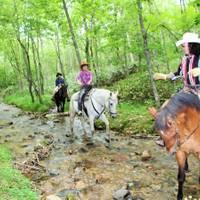 ウェスタンビレッジサホロ 北海道サホロ  ホーストレッキング(乗馬)