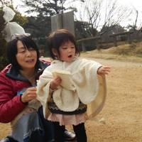 みやま公園 の写真 (2)