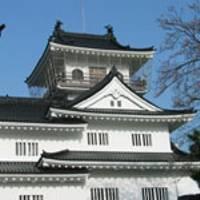 富山市郷土博物館(富山城) の写真 (3)