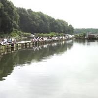 清遊湖へら鮒つり堀