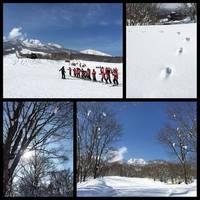 池の平温泉スキー場 の写真 (3)