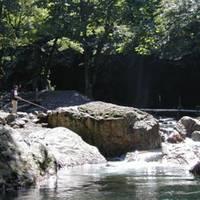 あしがくぼ渓谷国際釣場 の写真 (2)