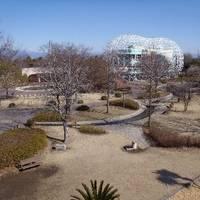 子供のもり公園伊勢崎 の写真 (3)