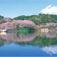 蓮華寺池公園 の写真 (1)