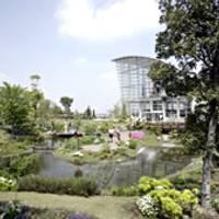 名古屋港ワイルドフラワーガーデン ブルーボネット の写真 (3)