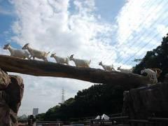 北九州の子連れで楽しめる遊び場20選!子供向けイベントやお出かけにぴったりな室内施設も