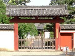 奈良県のお子連れ旅行おすすめスポット10選!鹿、寺、自然が満載