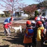 宮城県動物愛護センター の写真 (3)
