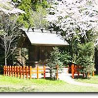 香取神宮(かとりじんぐう) の写真 (3)
