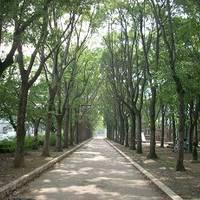 牛川遊歩公園(うしかわゆうほこうえん)