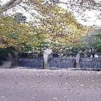 蚕糸の森公園(さんしのもり) の写真 (1)