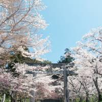 竈門神社(かまどじんじゃ)