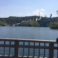 小中池公園 の写真 (2)