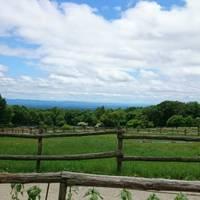 みこ30さんが撮った 那須高原 南ヶ丘牧場 の写真