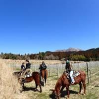 サウスヒル牧場 霧島ホーストレッキング(乗馬) の写真 (3)