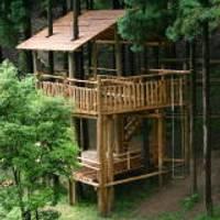 兵庫県立なか・やちよの森公園