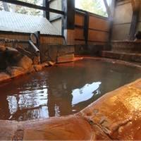濁河温泉ロッジ (にごりごおんせんろっじ)
