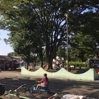 郷土の森公園 の写真 (3)
