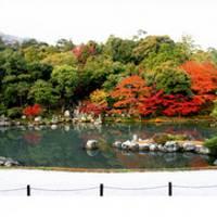 天龍寺(てんりゅうじ) の写真 (3)