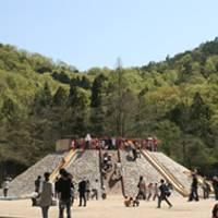 宝ヶ池公園 子どもの楽園 の写真 (3)