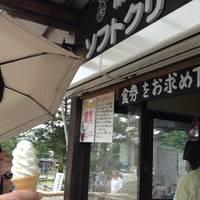 那須高原 南ヶ丘牧場 の写真 (2)
