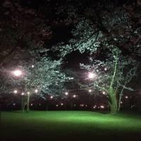 清水岩屋公園・キャンプ場