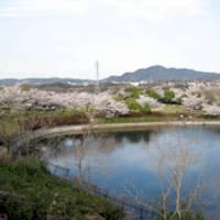 藤原山公園 の写真 (2)