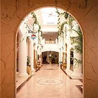 エミール ガレ美術館