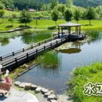 旭川市21世紀の森ファミリーゾーンキャンプ の写真 (3)